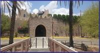 International Wildlife Museum